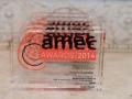 AMEC Summit Awards (34)
