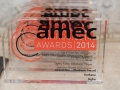 AMEC Summit Awards (35)