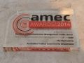 AMEC Summit Awards (38)